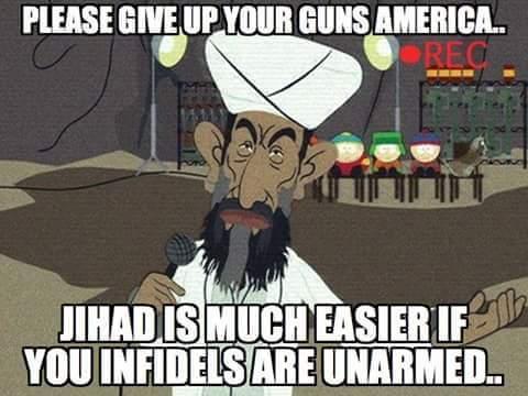 Gun surrender
