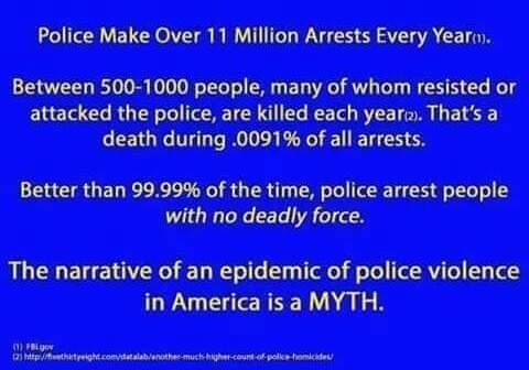 Police Violence Myth