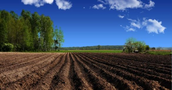 landscape, agriculture, plowed farmland in the country, visible furrows after passage of plow