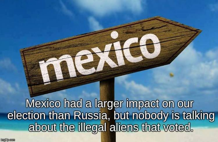 mexico-impact-on-voting